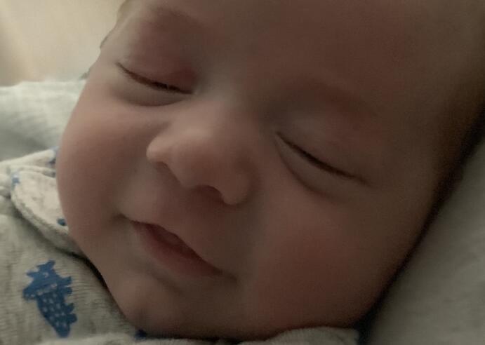 Baby Shepherd Ray